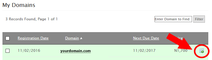 Manage Domains in DomainKing.NG client panel